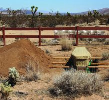 Green burial, an alternate, natural way to go