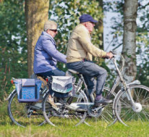 Electric bikes coming to a park near you