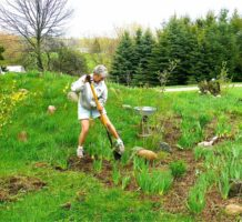 Do you wish to be a gifted gardener?