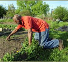 Gardeners: help yourself and others, too
